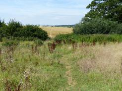 Nice walking path in the Hampton Gay area of Oxfordshire