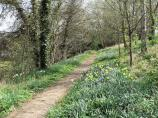A pleasant woodland path near Barton Abbey  in Oxfordshire.