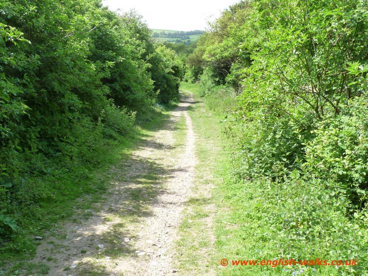 Ridgeway-Watlington.jpg