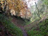 Sunken path in Wendover Woods - England.